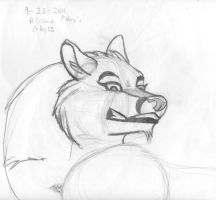 Anthro heads after Foley 19 by Dr-Pen