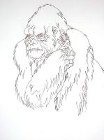 i give you...Kong by sprezzaturan