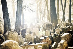 Old Jewish Cemetery by CaveCanem42