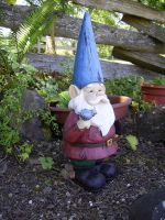 Garden Gnome 1 by chamberstock