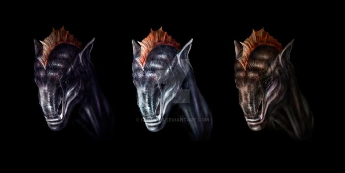 dragons portraits by Iwhengo
