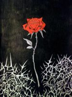 Rose and thorns drawing by Slabzzz