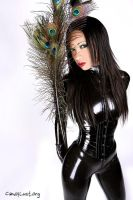 Peacock feathers and Latex by AgonyInEcstasy