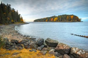Autumn and Sigma Dp0 Quattro..Valaam Islands  _59_ by my-shots