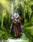 Morgomir - Lord of the Rings by SvPolarFox