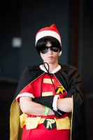 Christmas robin 1 -being serious by Not-another-robin