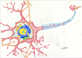 Neuron by TobiCass