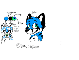 Finally Designed my fursona by ZestoTheFolf-ZW
