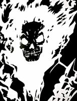 The Ghost Rider by Vcomics1