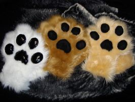 Some paws by Nevask