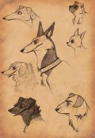 Cartoon Dog Scetches by Dae-Thalin