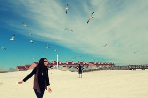 Frolicking with the Seagulls by kiwi28
