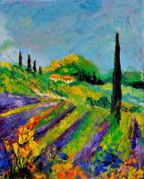 provence 451190 by pledent