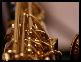 Sax 02 by robertodecampos