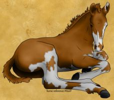 Paint Foal by Anaeo-vale