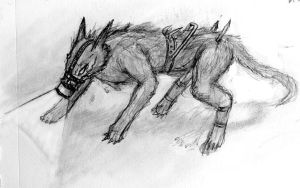 Stray - Pack Leader by Iron-Fox