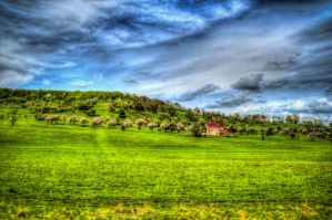 HDR Field by haxxy