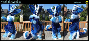 North the Minkin Outside Shots! by DandylionsLLC