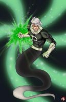 Timewarp: Danny Phantom by WiL-Woods