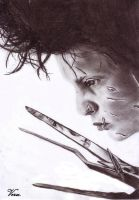 Edward Scissorhands by Veruxxx