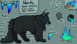 north reference by Corrosives