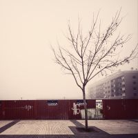 Lonely cold by ensilencio