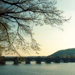 charles bridge by vanerich