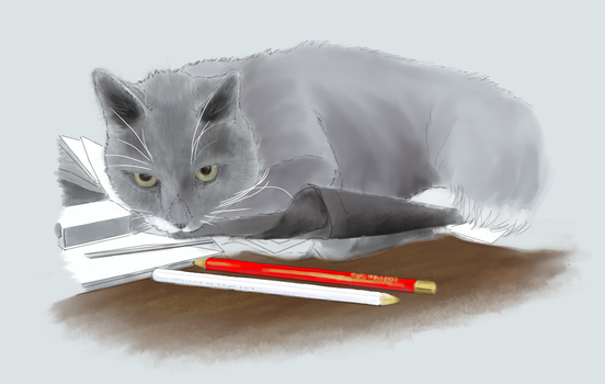 Colours blocked for portrait of Kitty by EvilAnemone