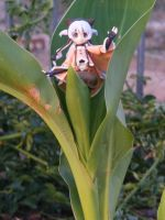 Attack of The Plant Loli! by TonioSteiner