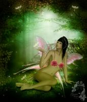 Beautiful Fairy by Zankruti-Murray