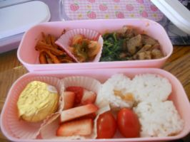 Bento Lunch! by Michi-Mii