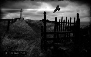 The Storm Gate II. by l8