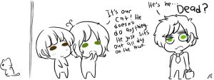 MP + APH_Confuse-a-cat by StarValerian