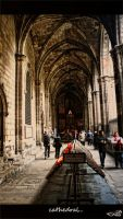 Cathedral... by archonGX