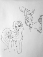 Hello There by ameliacostanza