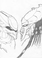 Seavus Vs Sangheili Ultra by ThePredatorMan