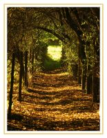 Autumn Path by Its-Only-Art