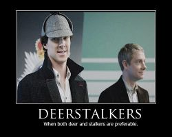Deerstalker Demotivational Poster by shallowgravy