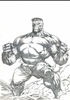 just HULK by komus