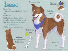 Isaac ref sheet by PrinzeBurnzo