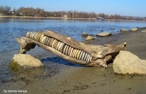 driftwood art-stone line in hungary by tamas kanya by tom-tom1969