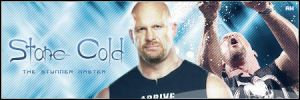 Stone Cold Steve Austin Sign by Wrestlemaniacos