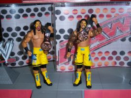 The Usos - Tag Team Champions by MisterBill82