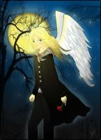 Angel in the Night by Kinmi