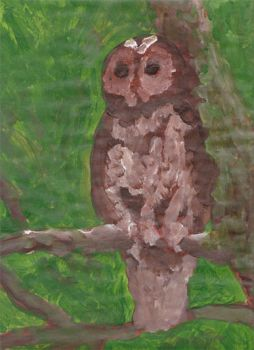 Owl done with acrylic paint by elainelouve