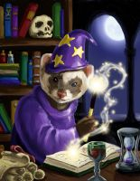 Wizard ferret by nienor