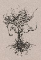 The Slumber Root by socar
