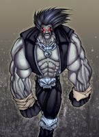 Lobo color by mennyo