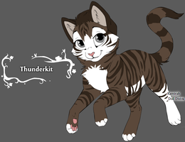 Thunderkit by Wanderisawesome