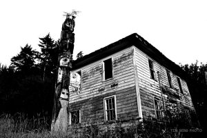 Abandoned in Alaska by dislexicpalindrome